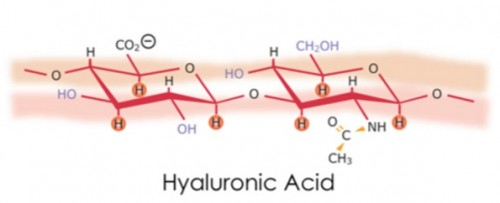 Hyaluronic acid diagram